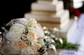San Tan Weddings - Specializing in Park,Yard, Wildreness and Hall Weddings
