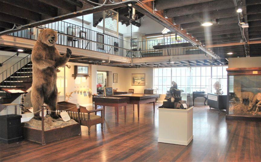 Main Gallery - PG Museum