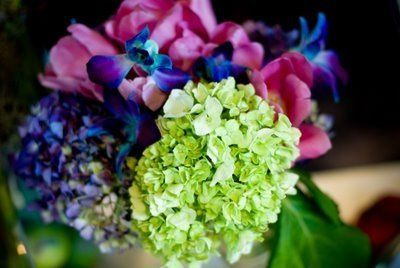 Tmx 1224707933522 Tanya 7638 768573 Hampton, Virginia wedding florist