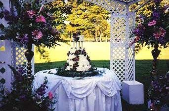 Outdoor wedding cake setup