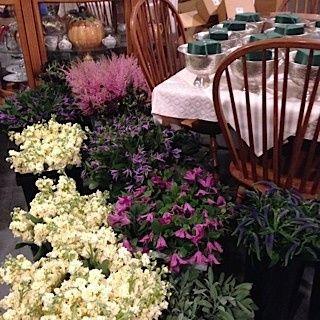 Tmx 1460145145631 Img1079 Ridgefield wedding florist