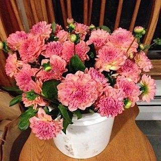 Tmx 1460145159589 Img1084 Ridgefield wedding florist