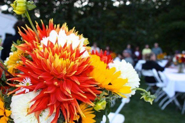 Tmx 1278791124746 1033455482859716328201156328734233917893n Spokane wedding planner