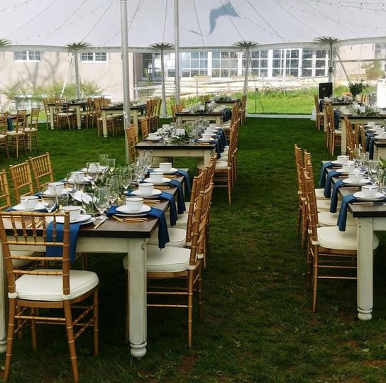 Gold chairs, Sailcloth tent