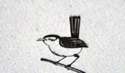 Tiny Wren Press 1