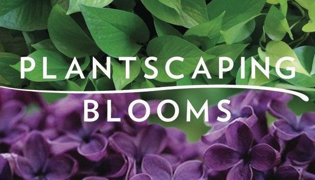 Plantscaping & Blooms