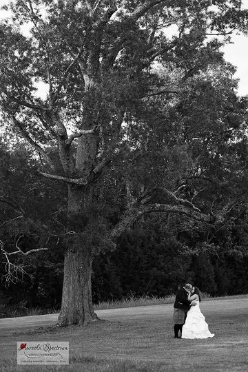800x800 1455404876271 bride groom oak tree kissing distance nc