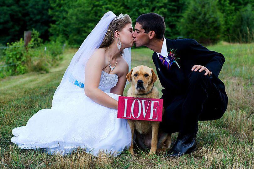 5c9145631936407e bride groom kiss dog love sign nc