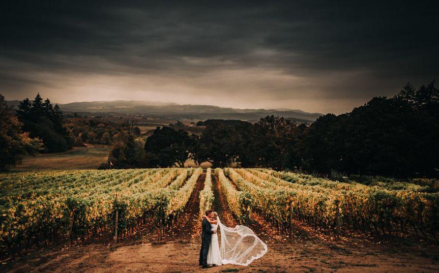 Eola Hills Legacy Vineyard