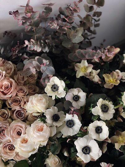 plum florals 500 51 28344 1570542146