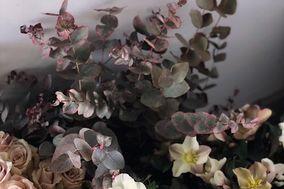 Mimosa Fresh Flower Design