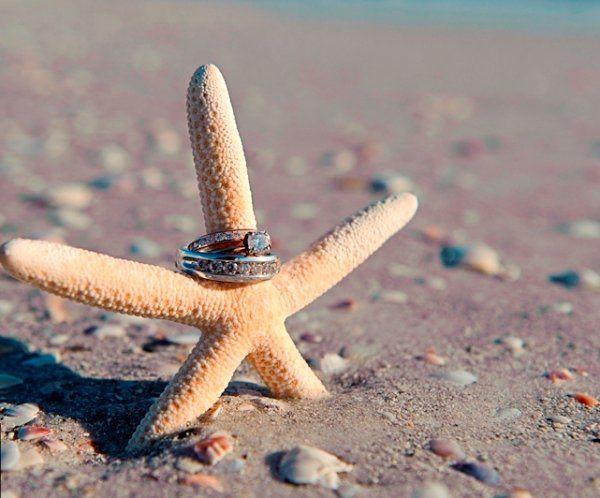 RingsStarfish