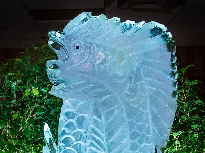 Tmx 1372789121394 Ice Sculpture 1 Edit 2 Zf 6052 87406 1 012 Saint Petersburg, FL wedding venue