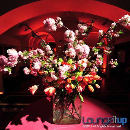 Tmx 1345479202903 LightingEventLightingPinSpottingRentalNJEvent3A Pine Brook wedding eventproduction