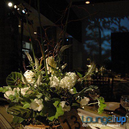Tmx 1345479208926 LightingEventLightingPinSpottingRentalNJEvent4A Pine Brook wedding eventproduction