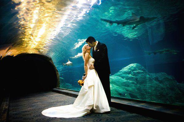 Tmx 1295983174987 543Judson Cherry Hill wedding photography