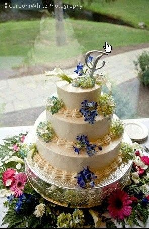 Tmx 1370032170336 Mcclung.johnson Cake Credit  Bill Cardoni Reeders, Pennsylvania wedding venue