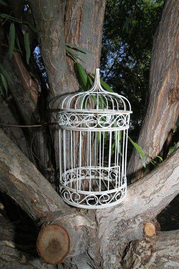 Birdcage on the tree