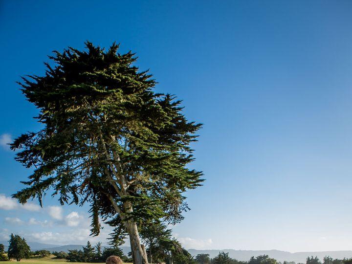 Tmx 1520534444 Ddb2dd971ad052df 1520534441 7ff009a8d5f6e4dc 1520534383487 52 Heidiborgiaphotog Monterey, CA wedding planner