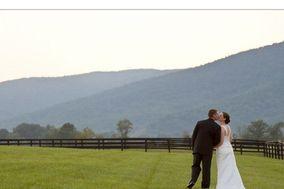 Mostardi Wedding Photography