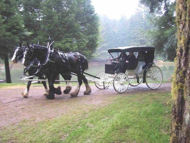 Tmx 1351694532252 Ww23 North Plains, OR wedding venue
