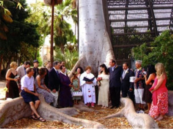 Butterfly release in historic Balboa Park after a private ceremony at the San Diego hummingbird...