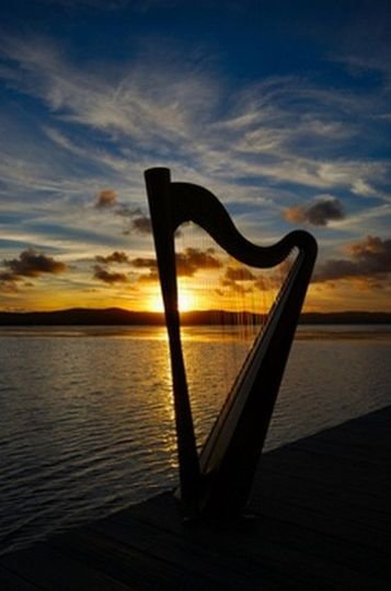 By the beach with harp