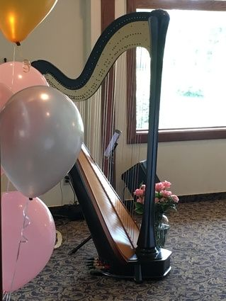 Harp at birthday party