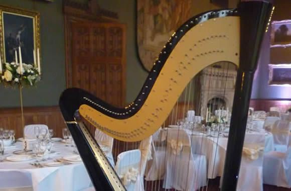 Harp at bridal shower