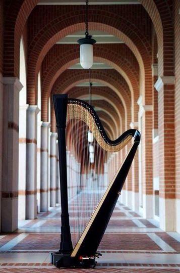 Harp in atrium