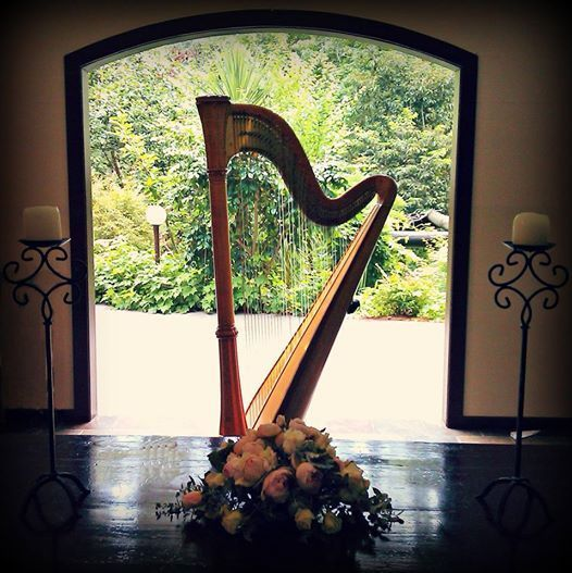 Harp in front of door