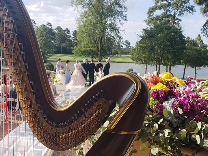 Tmx Harp By Water With Flowers 51 105644 Ithaca, New York wedding ceremonymusic