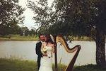 Lisa Craig Fenwick, Harpist image