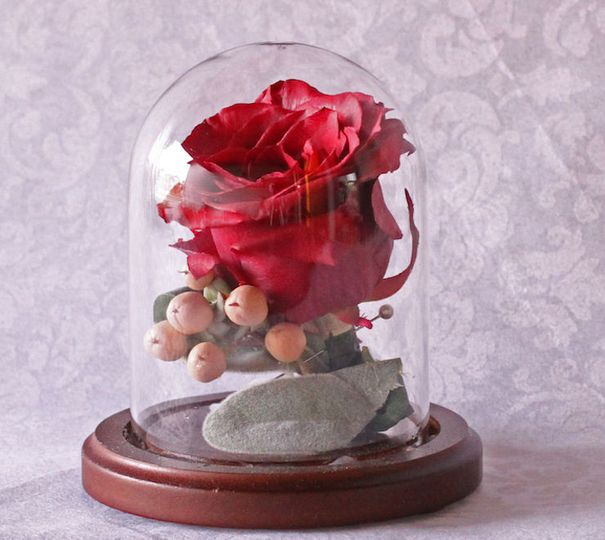 Freeze dried rose