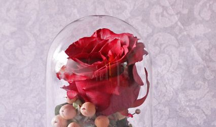 Blooms to Heirlooms