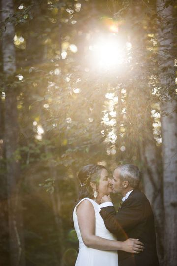 Kiss by the trees and sunlight