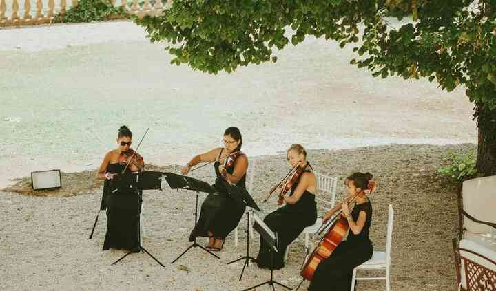 Lady's Orchestra String Quartet