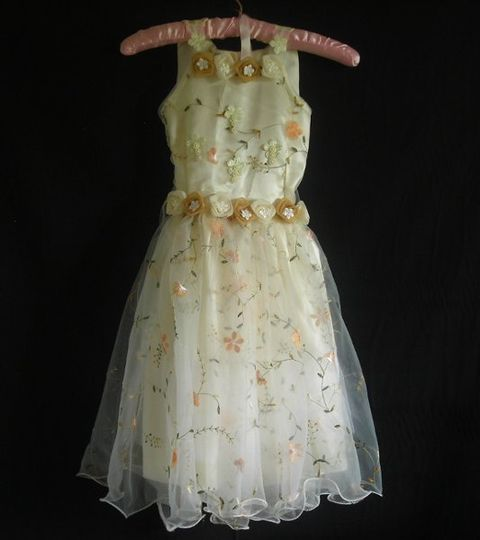 Really cute dress -Fabric is embroided, as seen on pictures -The back is adjustable. Ribbons had...
