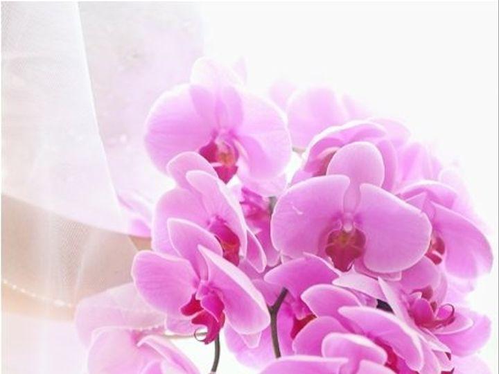 Tmx 1358189639863 8030233743e872907d12o Princeton wedding florist