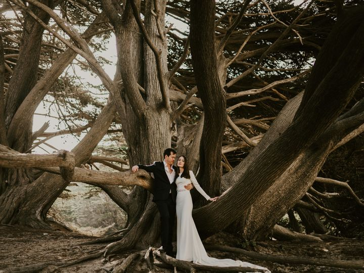 Tmx Big Sur Photographer 2 2 51 1010154 V4 Carmel, CA wedding photography