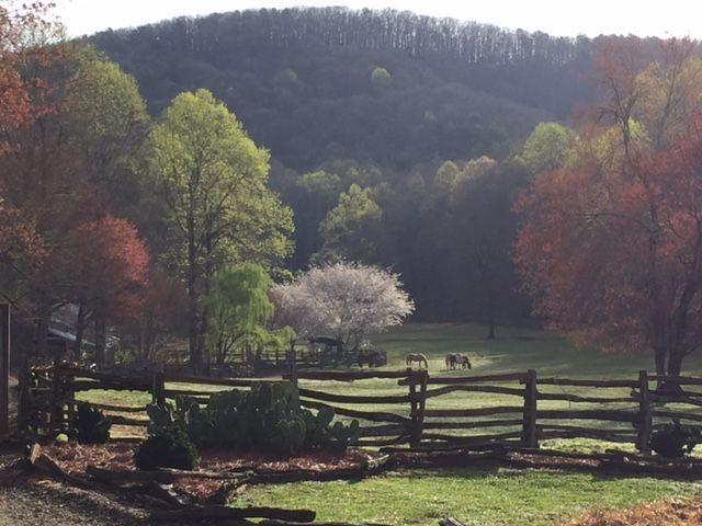855653520bfaec83 long Pasture Early Spring