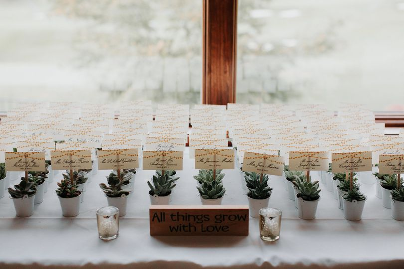 Table cards on succulents