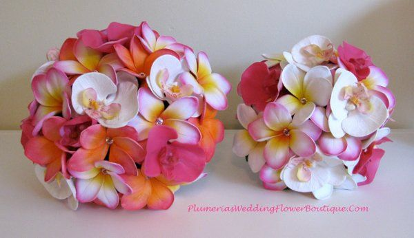 Plumeria and Orchid