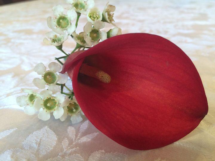 Tmx 1520209903 Dd0aae6d71e9564c 1520209899 0ffbbaf19addc03d 1520209817500 57 Img 6608 Bethesda, District Of Columbia wedding florist