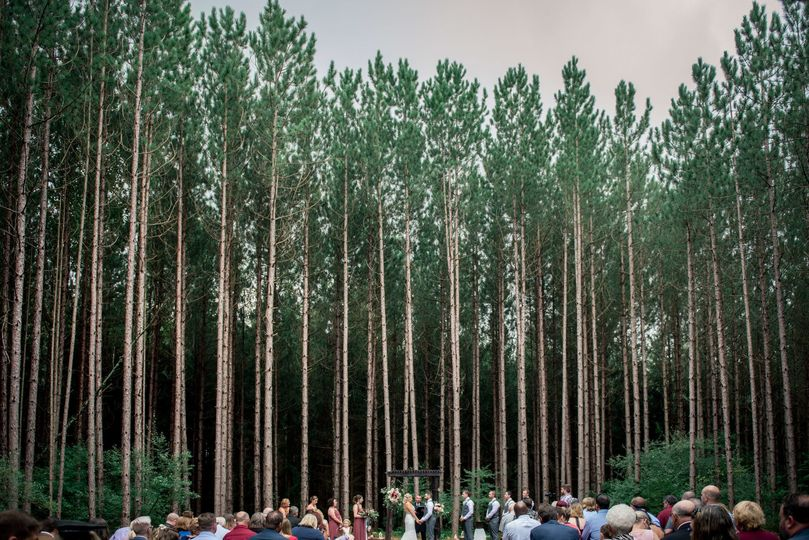 Wedding Ceremony in Pine Grove Forest in Pennsylvania