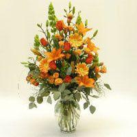 Tmx 1375060320665 Orangecrushskuff1786a Greensboro wedding favor