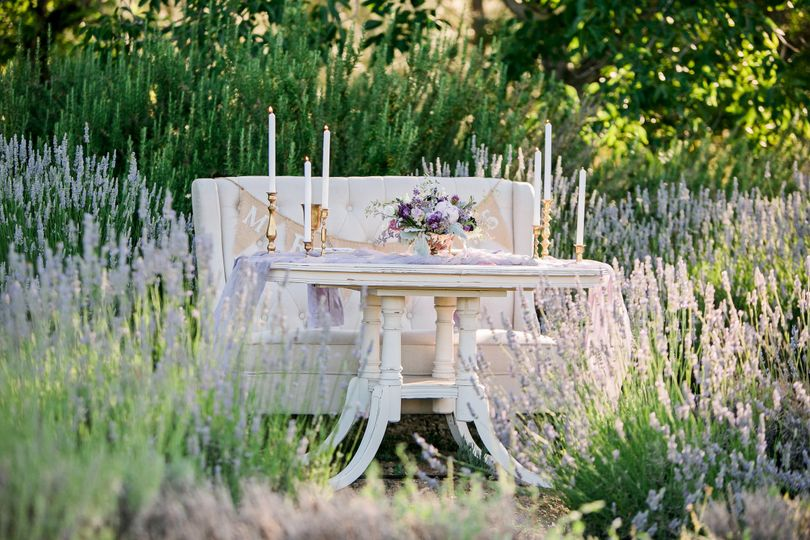Cache Creek Lavender Farm ElopementMegan Wilkinson PhotographyFull Belly Farms FloralBlossom Farm...