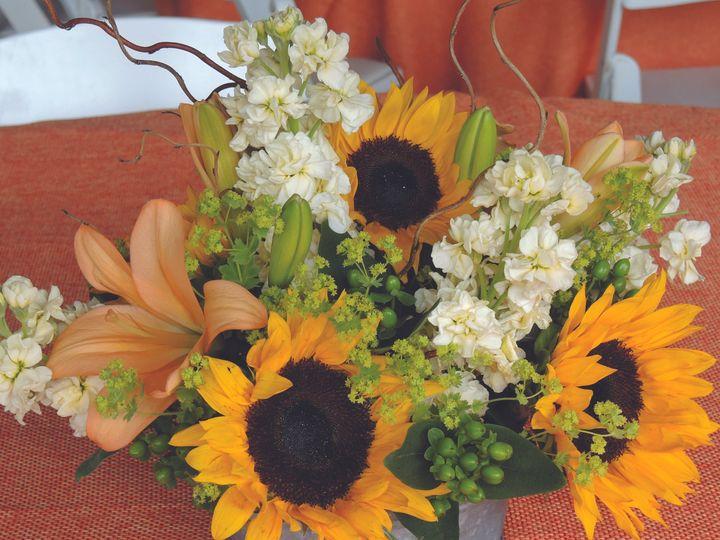 Tmx 1426797194590 Sunflowers Manchester, Vermont wedding venue