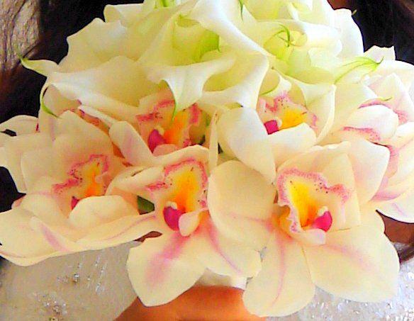 Tmx 1340835967179 YachtFlowers Los Alamitos, CA wedding officiant