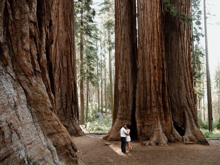 Tmx Sequoia National Park Engagement Photos 48 51 988554 159838538520450 Marietta, GA wedding photography